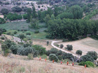 ETAPA 1 – Tramo 1D. Fuentes de la Alcarria a Brihuega