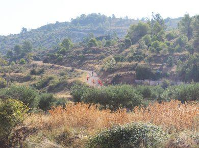 ETAPA 4 – Tramo 4B. De Auñón a Fuentelencina